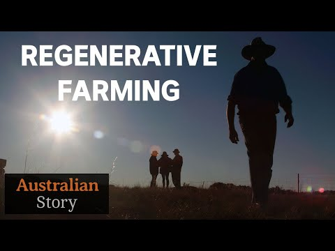 Regenerative farming: A 'natural way' to help counteract drought | Charlie Massy | Australian Story