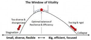 The window of vitality